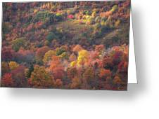 Hillside Rhythm Of Autumn Greeting Card