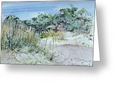 Hilton Head Beach Fauna Greeting Card