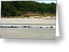Hilton Head Island Shoreline Greeting Card