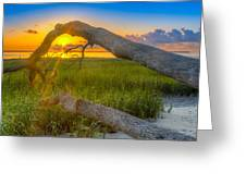 Hilton Head Island Sunrise Greeting Card