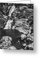 Himalayan Bath Bw Greeting Card