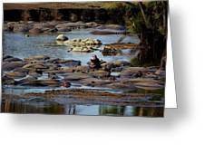 Hippo Raft Greeting Card