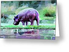 Hippopotamus Greeting Card