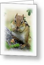 Hippy Chip - Chipmunk - Vertical Greeting Card