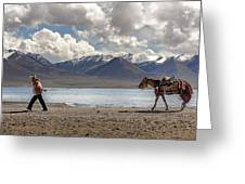 His Horse, Tibet, 2007  Greeting Card