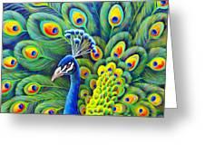 His Splendor Greeting Card by Nancy Cupp