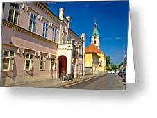 Historic Architecture Of Town Bjelovar Greeting Card