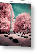 Historic Cemetery In Infrared Greeting Card