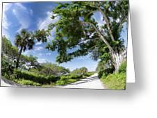 Historic Jungle Trail Vero Bch Fl I Greeting Card