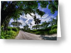Historic Jungle Trail Vero Bch Fl V Greeting Card