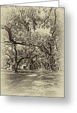Historic Lane Antique Sepia Greeting Card