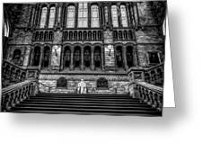 History Museum London Greeting Card by Adrian Evans
