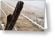 Hoarfrost And Fence Greeting Card