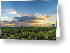 Hobe Sound Beach Sunrise Greeting Card