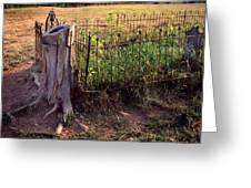 Hogeye Grave Site Greeting Card