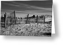 Holding Back The Dunes In Black And White Greeting Card
