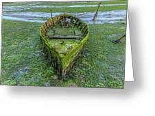 Holes Bay - England Greeting Card