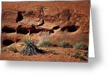 Holes - Yucca - Kodachrome Basin Greeting Card