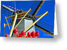 Holland Greeting Card