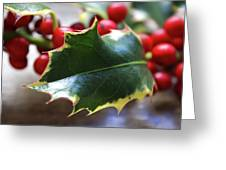 Holly Berries- Photograph By Linda Woods Greeting Card