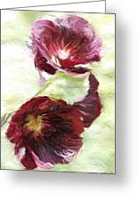 Holly Hock 1d Greeting Card