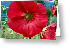 Hollyhock Hill Greeting Card