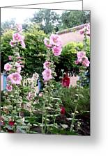 Hollyhocks Taos New Mexico Greeting Card