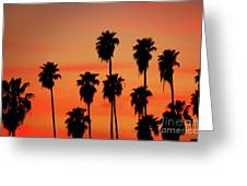 Hollywood Sunset Greeting Card