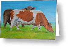 Holstein Friesian Cow And Brown Cow Greeting Card