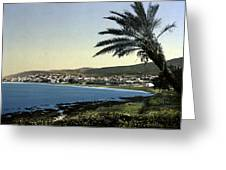 Holyland - Mount Carmel Haifa Greeting Card