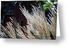 Home Behind The Grass Greeting Card