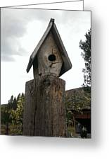 Home For The Birds Greeting Card