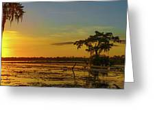 Home Home On The Swamp Greeting Card