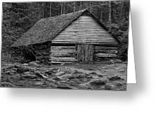 Home In The Woods Bw Greeting Card