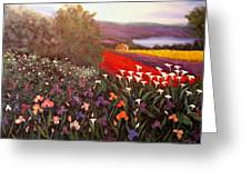 Home In Tuscany Greeting Card