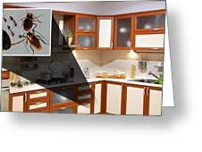 Home Pest Control Service Greeting Card
