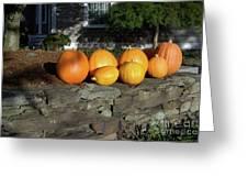 Homegrown Pumpkins Greeting Card