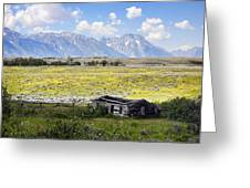 Homestead In The Grand Tetons Greeting Card