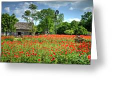 Homestead In The Poppies Greeting Card