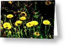 Honey Bee Haven Greeting Card