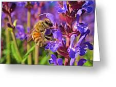 Honey Bee I Greeting Card