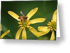 Honey Bee Mine Greeting Card