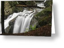 Honey Hollow Falls Greeting Card