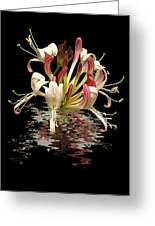 Honeysuckle Reflections Vertical Greeting Card
