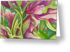Hong Kong Orchid Greeting Card