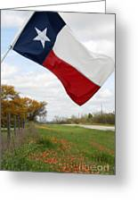 Honor The Texas Flag Greeting Card