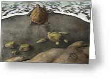 Honu Beach Greeting Card