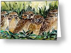 Hoo Is Looking At Me? Greeting Card
