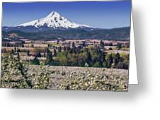 Hood River Orchards Greeting Card