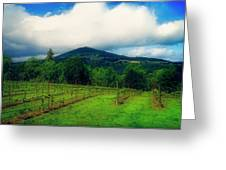 Hood River Oregon - Cloud Burst Over The Vineyard Greeting Card